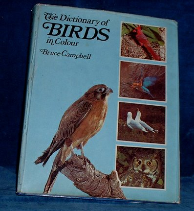 Campbell,Bruce - THE DICTIONARY OF BIRDS IN COLOUR 1974